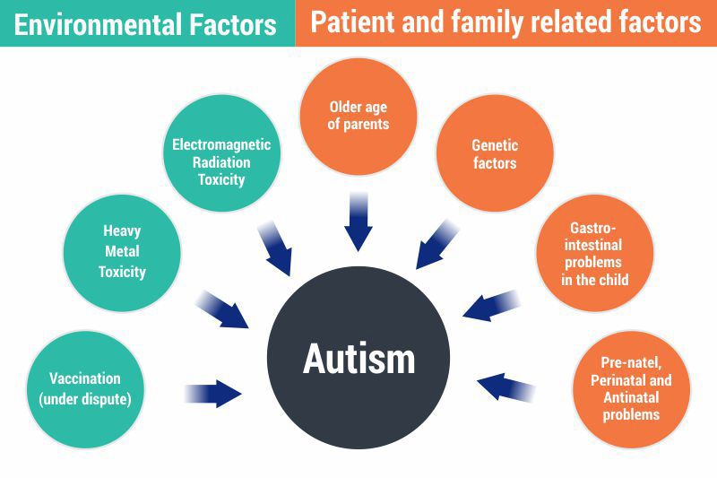 Patient and Family Related Factors in Autism, What Causes Autism, Autism Connect.